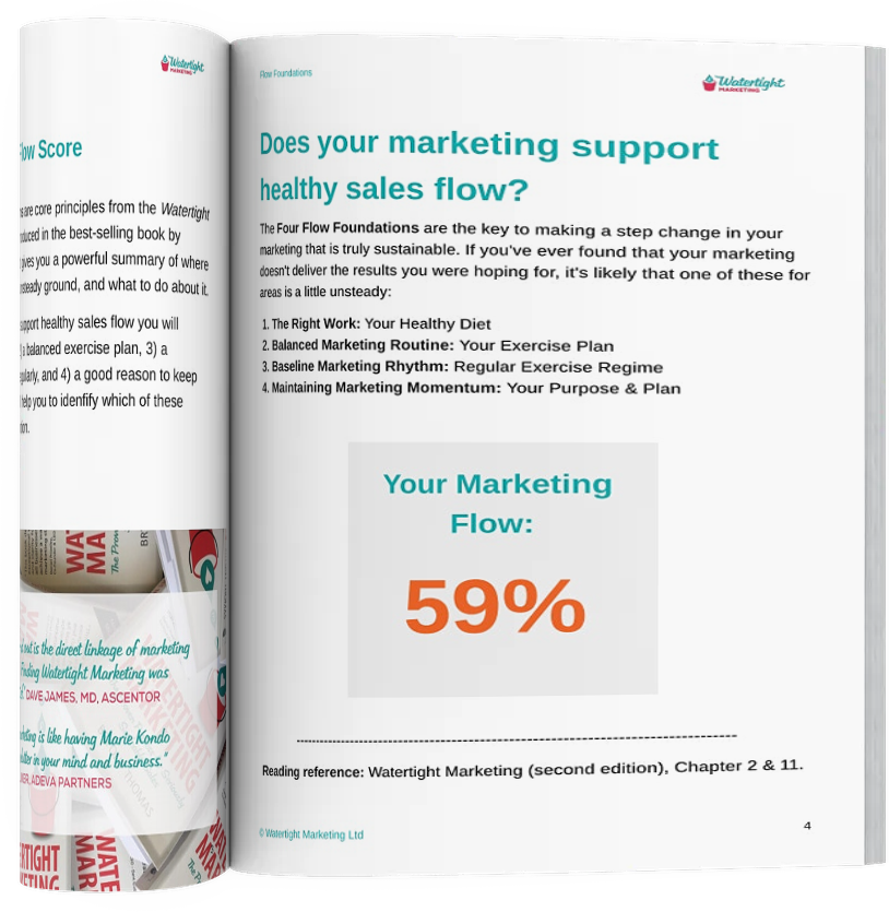 Watertight Marketing, Four Flow Foundation Report