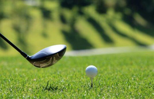 Dummer Golf Club - Golf Ball